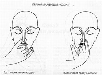Пранаяма чередуя ноздри: дыхание в аюрведе